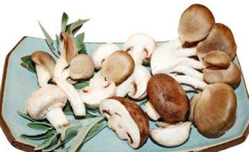 Cavatelli con i funghi