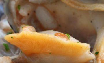 Sedani ai frutti di mare